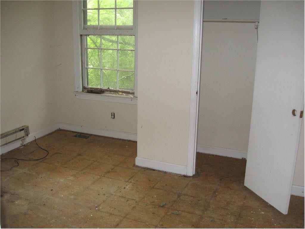 Main Floor Rear