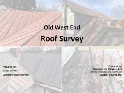 Metal Roof Survey